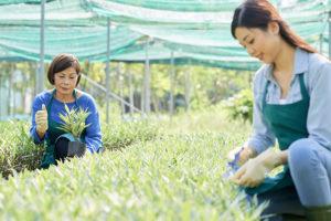 農家の債務整理